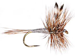 Adams dry fly on white background